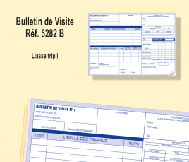 Bulletin de Visite